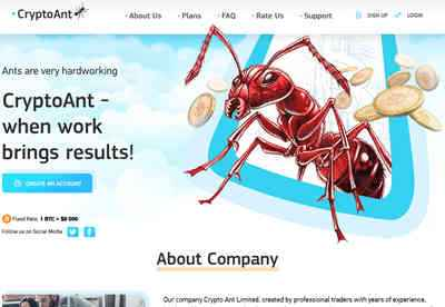 Crypto Ant Limited screenshot