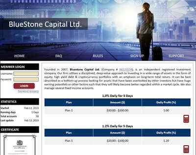 BlueStone Capital Ltd. screenshot