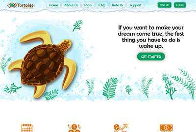 Tortoise Trading Limited - tortoisetrading.pro 8191